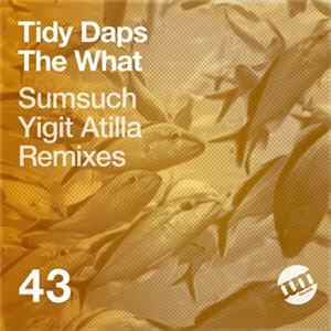 Tidy Daps - The What mp3